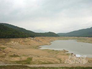 Bình Định: Hồ đập cạn kiệt, chắt chiu từng giọt nước tưới