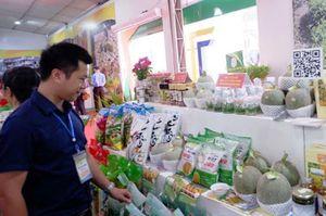 Huyện Ba Vì (Hà Nội): Gắn sao OCOP, thêm cơ hội cho sản phẩm địa phương