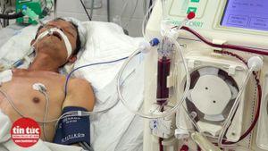 Bệnh viện Đa khoa Hòa Bình cứu sống ca bệnh Whitmore nguy kịch