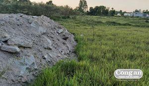 Hô 'biến' đất nông nghiệp thành đất nền