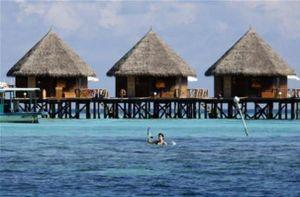 Khu nghỉ dưỡng ở Maldives đón khách, Pháp mở cửa công viên Disneyland