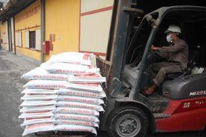 Phân bón Văn Điển giúp cây lúa Bắc Giang vượt trội về năng suất và chất lượng