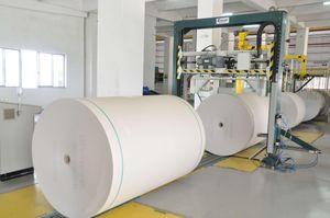 Tăng cường sản xuất giấy bao bì cao cấp để đáp ứng nhu cầu thị trường