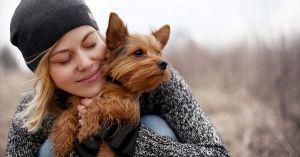 Nuôi chó giảm tới 31% nguy cơ tử vong với bệnh nhân tim mạch, đột quỵ