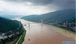 Sông Trường Giang đạt đỉnh lũ, người đàn ông vẫn liều lĩnh bơi qua