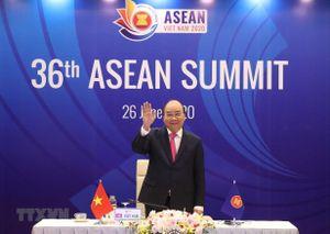 Đại sứ các nước ASEAN tại Nga đánh giá cao vai trò của Việt Nam