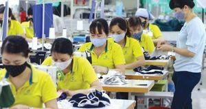 Ngành sản xuất đồ bảo hộ hút vốn từ Nhật Bản