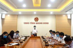 UBND tỉnh nghe báo cáo đề xuất tổng thể phát triển khu phao, chuyển tải khu vực Hòn Nét và Hòn Soi Mui (TP Cẩm Phả)