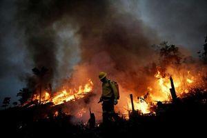 Cháy rừng Amazon dữ dội, sẽ tồi tệ hơn thảm họa năm ngoái?