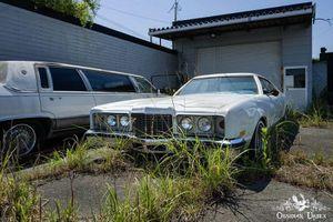 Những chiếc ôtô Mỹ bỏ hoang sau thảm họa sóng thần Nhật Bản