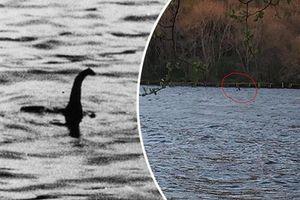 Quái vật hồ Loch Ness đã chết, liệu tìm được xương dưới đáy hồ?