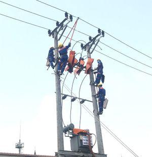 PC Ninh Bình: Hạn chế sự cố lưới điện nhờ 5S