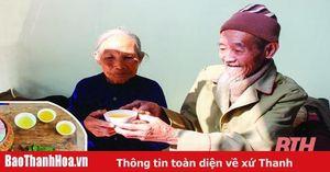 Cây chè Thanh Hóa và giống chè ngon Yên Lược