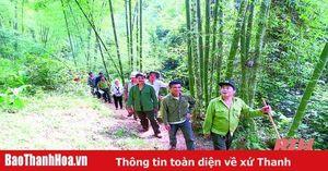 Huyện Quan Hóa: Xã hội hóa công tác bảo vệ và phát triển rừng hiệu quả