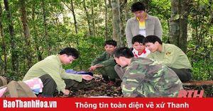 Huyện Thường Xuân chủ động bảo vệ và phát triển rừng
