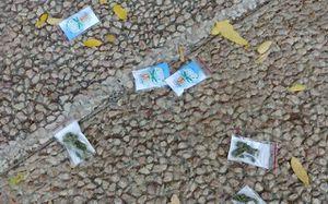 Máy bay thả hơn 100 gói cần sa xuống đường ở Israel