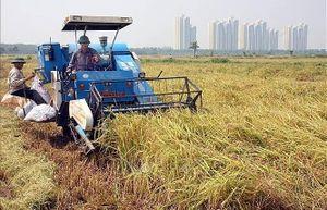 Hà Nội có 355/382 xã đạt chuẩn nông thôn mới