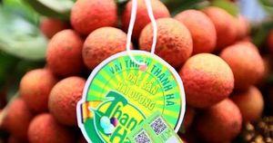 Xây dựng thương hiệu nông sản Việt từ truy xuất nguồn gốc