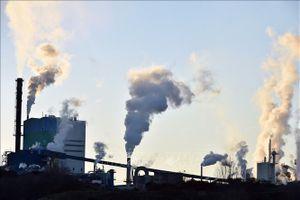 13% số ca tử vong tại châu Âu do ô nhiễm môi trường