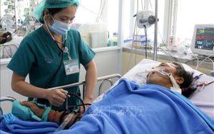 Bệnh nhân bị rắn hổ mang chúa cắn đã qua cơn nguy kịch