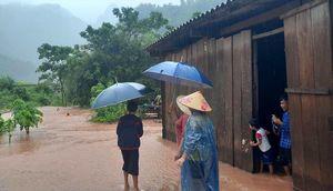 Quảng Bình: 9 người bị thương, 66 người đi rừng chưa liên lạc được