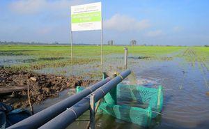 Làm nông nghiệp thông minh, đem lại hiệu quả thiết thực cho nông dân