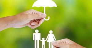 8 tháng, tổng doanh thu phí bảo hiểm ước đạt 114.091 tỷ đồng