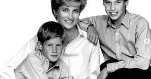 Dùng hình ảnh của mẹ quá cố để 'kiếm lợi', Hoàng tử Harry châm ngòi cho trận chiến mới với anh trai William, Hoàng gia Anh cũng phải tức giận?