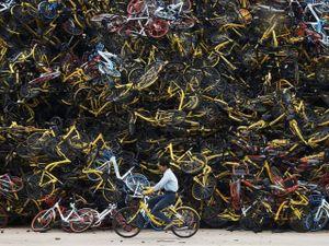 Dân Trung Quốc sợ hãi tới mất ngủ vì xe đạp 'kêu cứu thảm thiết'