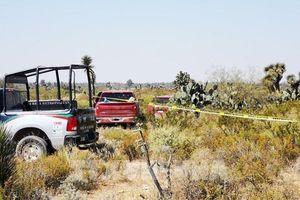 Mexico: Phát hiện 12 thi thể trong 2 xe ôtô