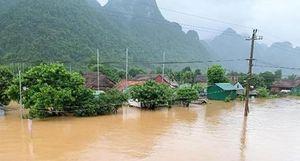 Hơn 12.000 nhà dân Quảng Bình bị ngập vì mưa lũ