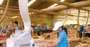 Chống gian lận thương mại - vấn đề sống còn với ngành gỗ