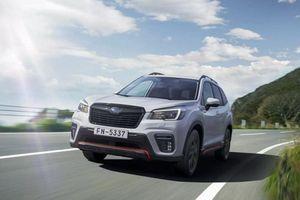Chi tiết Subaru Forester Edition Sport40 mới hơn 1 tỷ đồng
