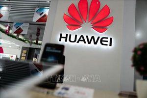 Mảng smartphone của Huawei rơi vào thế khó