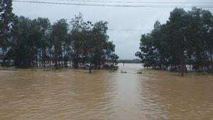 Quảng Trị mưa lớn, nhiều nơi ngập sâu và bị chia cắt