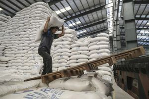 Giá lúa gạo hôm nay ngày 22/10: Giá gạo quay đầu giảm nhẹ