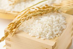 Giá lúa gạo hôm nay ngày 23/10: Giá gạo xuất khẩu bất ngờ tăng vượt Thái