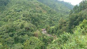 WB ký thỏa thuận trị giá 51,5 triệu USD hỗ trợ giảm lượng khí thải carbon cho Việt Nam