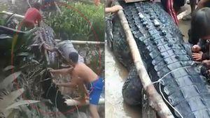 Bắt cá sấu nặng 680 kg từng ăn thịt người ở Indonesia
