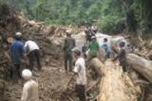 Vụ sạt lở núi, 4 người bị chôn vùi: Vẫn chưa tìm thấy nạn nhân thứ 4