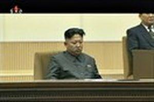 Báo Straits Times: Kim Jong-un cho chó đói ăn thịt ông Jang Song-thaek