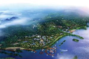 Nhà đầu tư Sân bay Vân Đồn hé lộ kế hoạch khủng