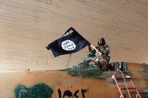 Mổ xẻ 'kế sách' tiếm quyền của Nhà nước Hồi giáo