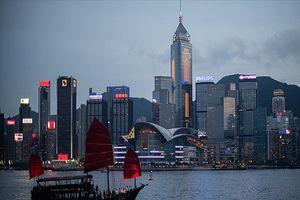 Dân Hồng Kông làm việc chăm chỉ nhất thế giới