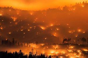 Cảnh cháy rừng đẹp siêu thực qua ống kính người đuổi bắt