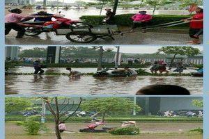 Dịch vụ kiếm bộn tiền nhân ngày Hà Nội ngập nặng