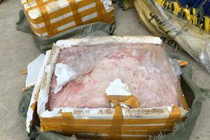 Thu giữ 500 kg nầm lợn Trung Quốc nhập lậu
