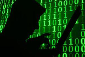 Hacker Nga nhận tội tấn công hơn 1 vạn máy chủ ở Mỹ
