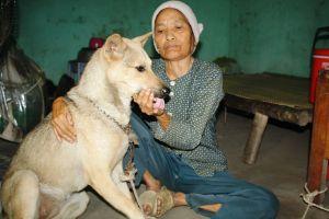 Cụ bà mang bệnh neo đơn, ngày ngày làm bạn cùng chú chó