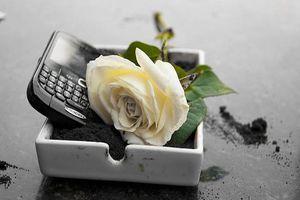 Blackberry tiếp tục 'khốn đốn' vì chiến lược kinh doanh mới